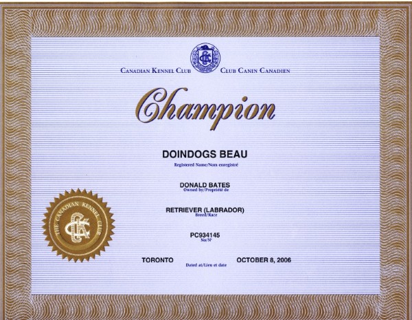 Ch doindogs beau champion certificate yadclub Choice Image