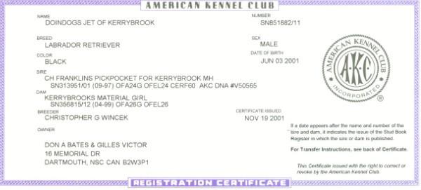 Doindogs Jet of Kerrybrook CD